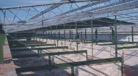 Edifício estrutura metálica